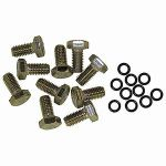 Raumer Box of no.10 Stainless Steel Captive Screws M8